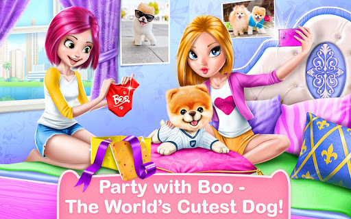 Boo - The World's Cutest Dog