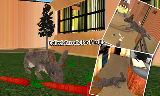 Pet Rabbit Vs Dog Attack 3D