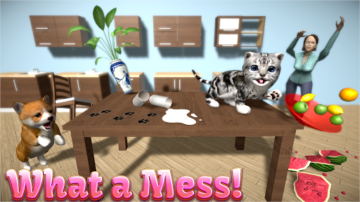 Cat Simulator - and friends 🐾