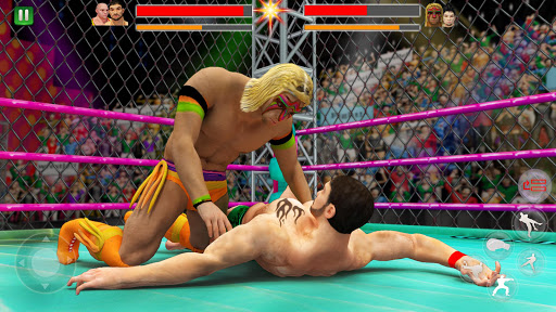 Cage Wrestling Revolution: Ladder Match Fighting