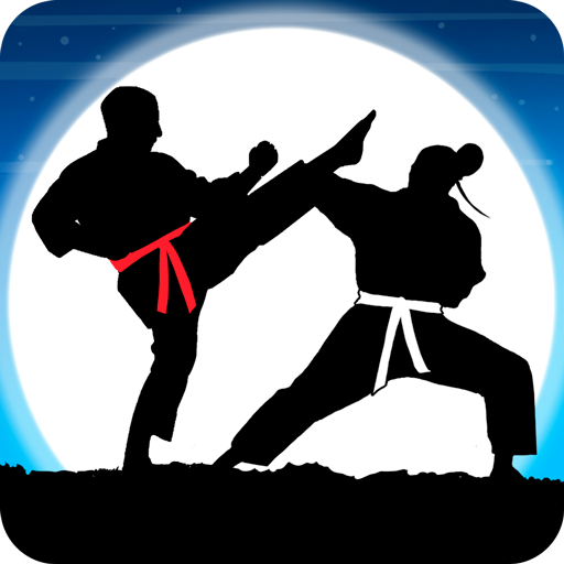 Karate Fighter: Real battles