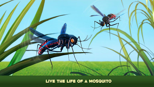 Mosquito Insect Simulator 3D